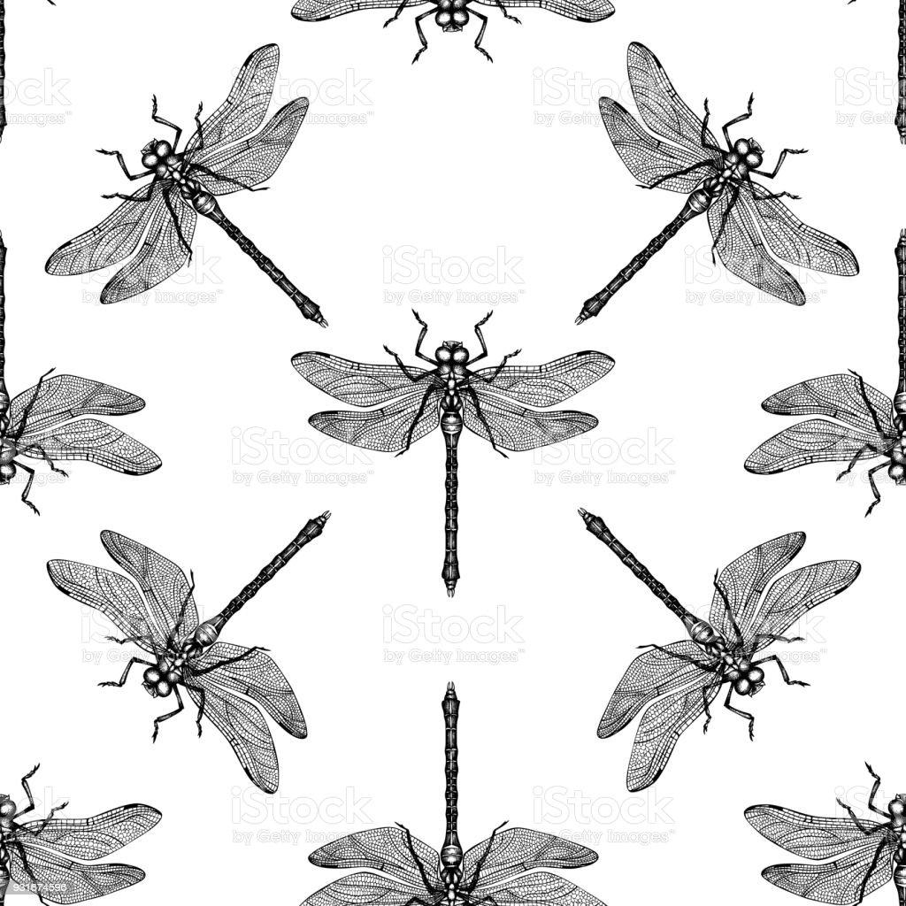 Ausgezeichnet Libelle Vorlage Ideen - Beispiel Zusammenfassung ...