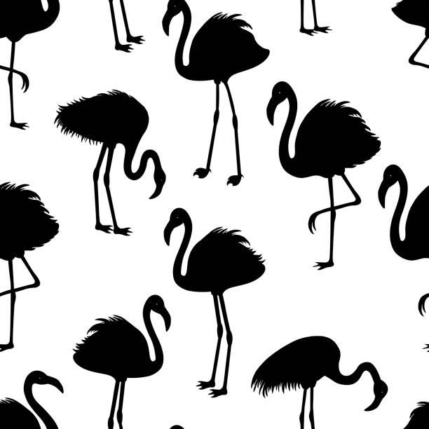 ilustrações de stock, clip art, desenhos animados e ícones de seamless pattern with flamingos silhouette - pena de pássaro algodão