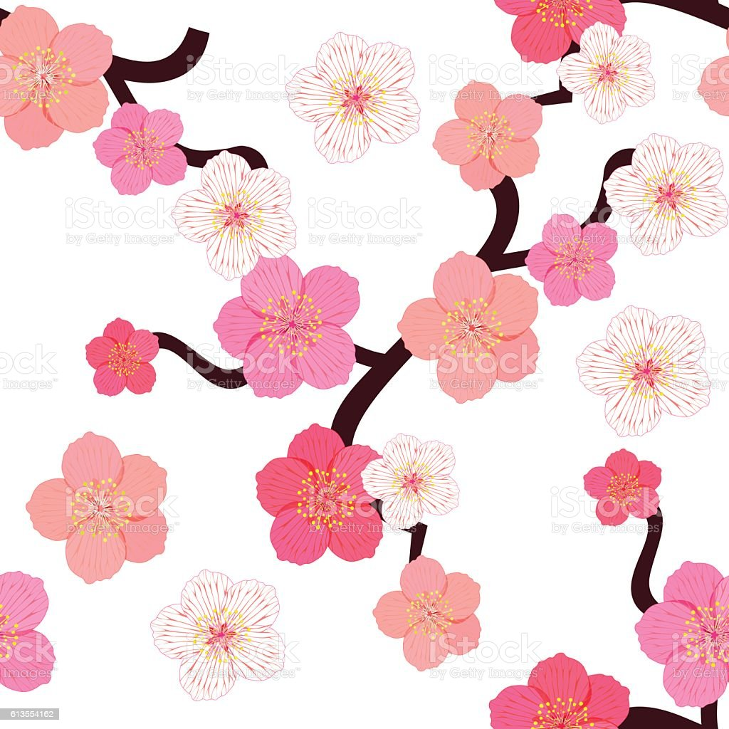 seamless pattern with flowers of Japanese of cherries. vector il vector art illustration