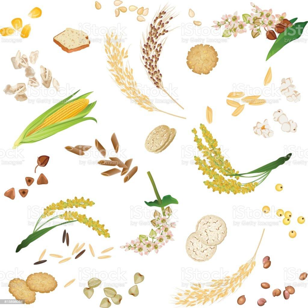 Seamless pattern with gluten free cereal foodstuff vector art illustration
