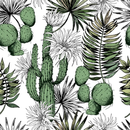 Seamless pattern with green cactus plants and white flowers.