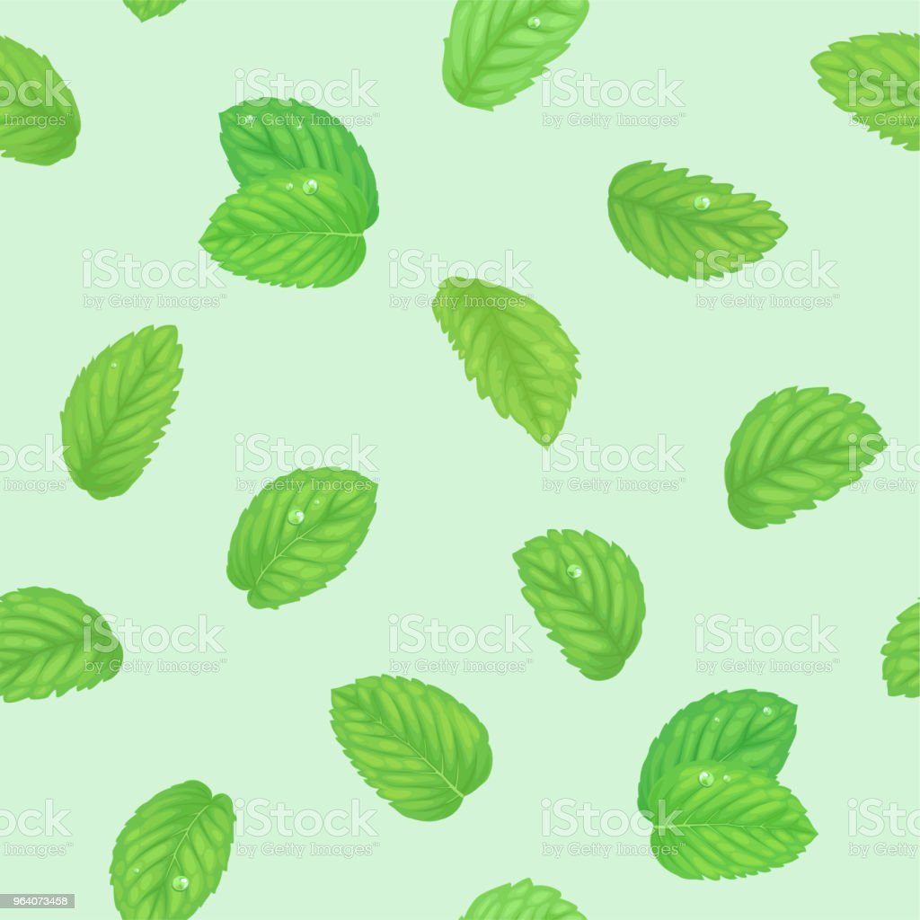 Seamless pattern with green mint leaves and dew on green background template. - Royalty-free Agriculture stock vector