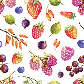 Seamless pattern with tasty hand drawn berries - strawberry, wild strawberry, currant, raspberry, barberry, gooseberry, blueberry