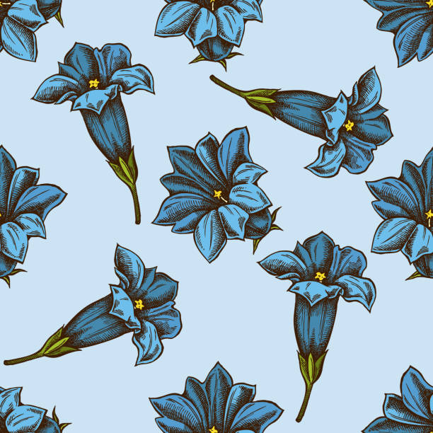stockillustraties, clipart, cartoons en iconen met naadloos patroon met de hand getekend gekleurde gentiana - gentiaan