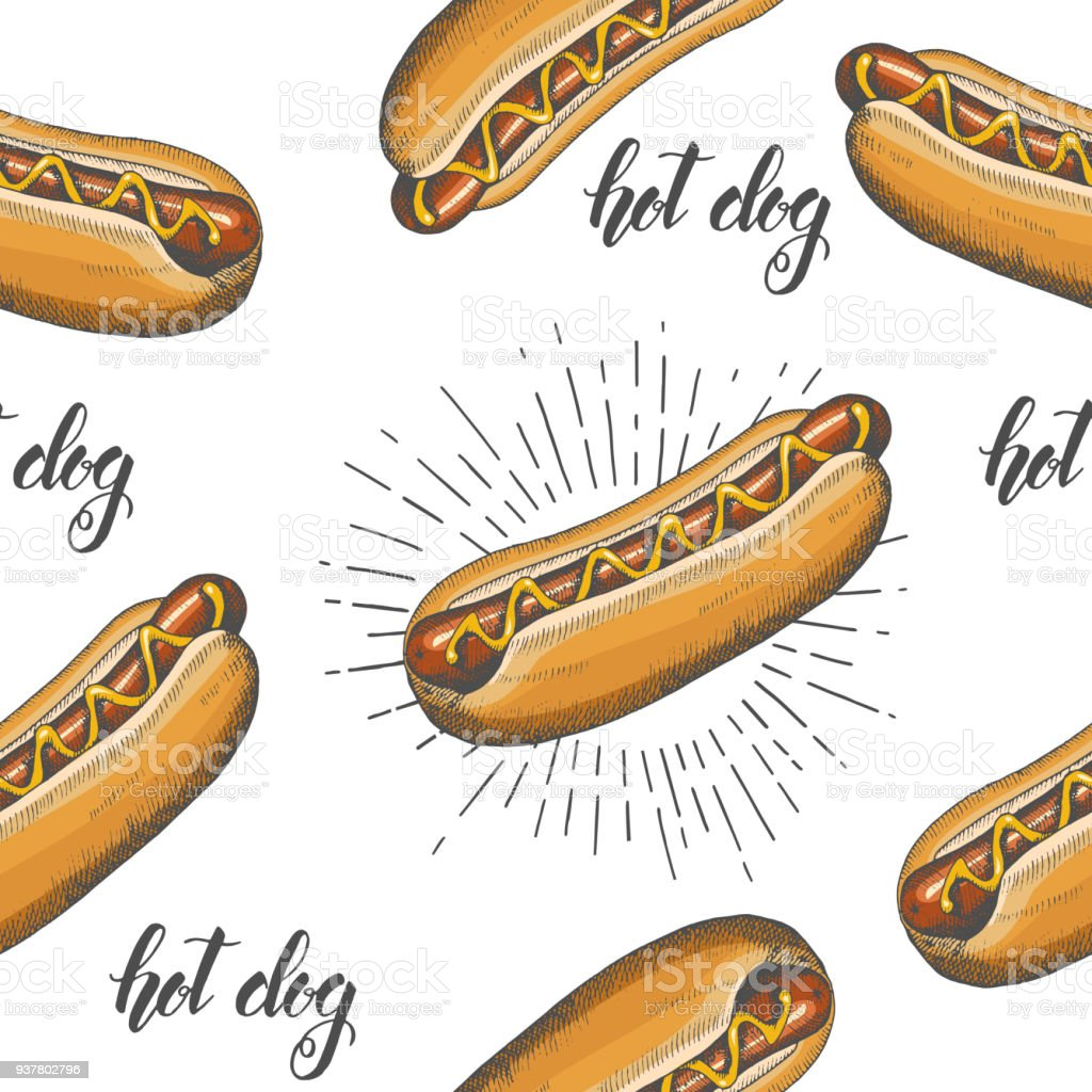 Seamless Pattern With Hand Drawn Hot Dog Vector Fast Food