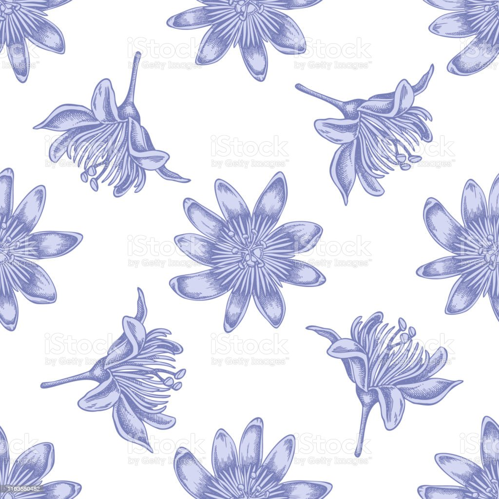 Seamless pattern with hand drawn pastel passion flower - arte vettoriale royalty-free di Ambientazione esterna