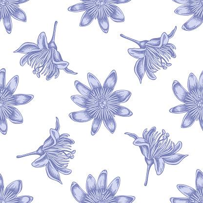 Seamless Pattern With Hand Drawn Pastel Passion Flower - Immagini vettoriali stock e altre immagini di Ambientazione esterna