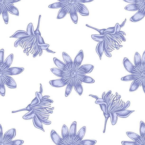 illustrazioni stock, clip art, cartoni animati e icone di tendenza di seamless pattern with hand drawn pastel passion flower - illustrazioni di passiflora