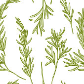 Seamless pattern with hand drawn pastel rosemary stock illustration