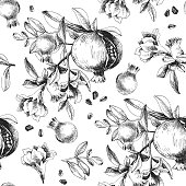 Monochrome seamless pattern with hand drawn pomegranate branches. Vector illustration