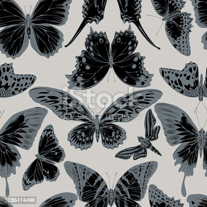 Seamless pattern with hand drawn stylized giant swordtail, lemon butterfly, red lacewing, african giant swallowtail, white-banded hunter hawkmoth, forest mother-of-pearl, plain tiger stock illustration