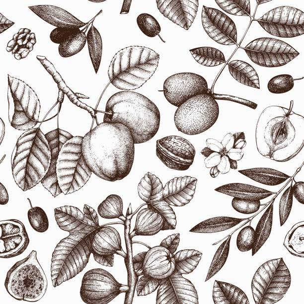 Seamless pattern with hand drawn trees Spring background with decorative fruits trees illustration. Vector botanical elements. apple blossom stock illustrations
