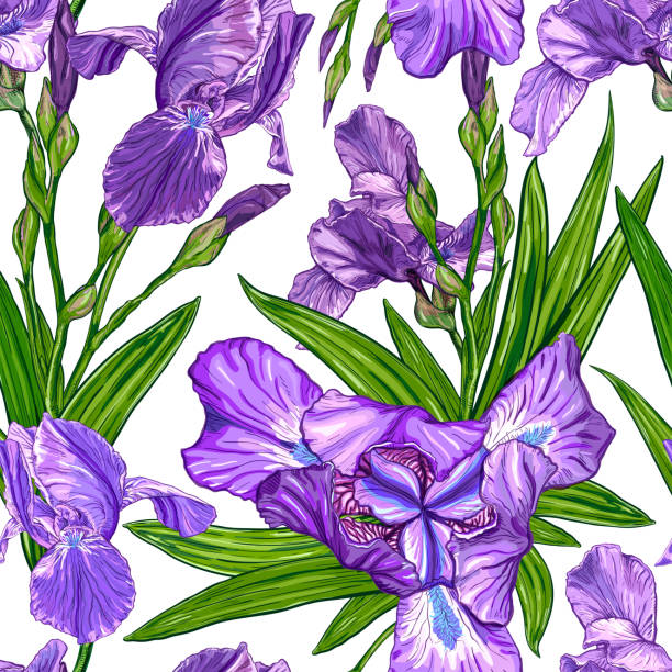 Seamless pattern with Iris flowers Seamless pattern with Iris flowers on a white background. Hand drawn sketch. Template for textile floral design iris plant stock illustrations