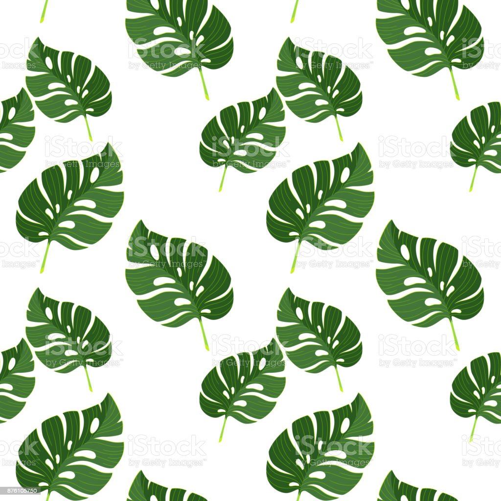 feuilles de mod le sans couture avec jungle tropicale monstera illustration vectorielle texture. Black Bedroom Furniture Sets. Home Design Ideas