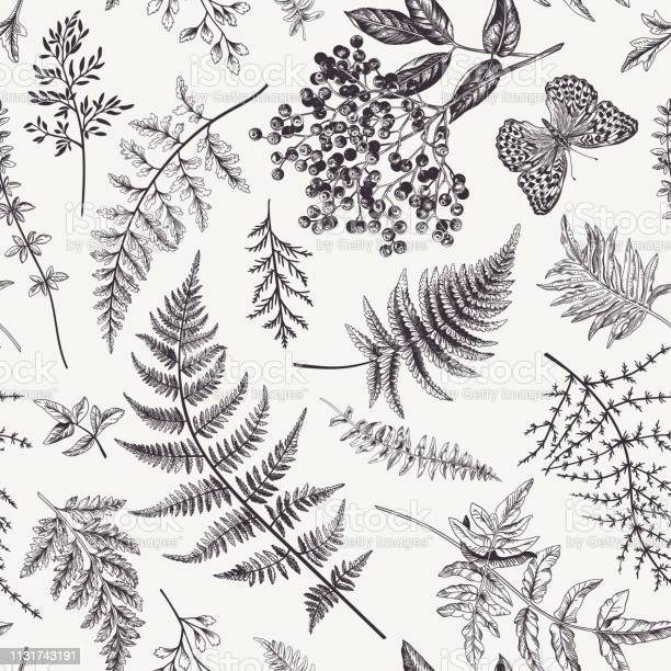 Seamless pattern with leaves and butterfly vector id1131743191?b=1&k=6&m=1131743191&s=612x612&h=byjopxe7e2hak82aaab zituwetxu46vdjfqeq2jshu=