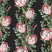 Seamless pattern with leaves, protea flowers, succulent and eucalyptus