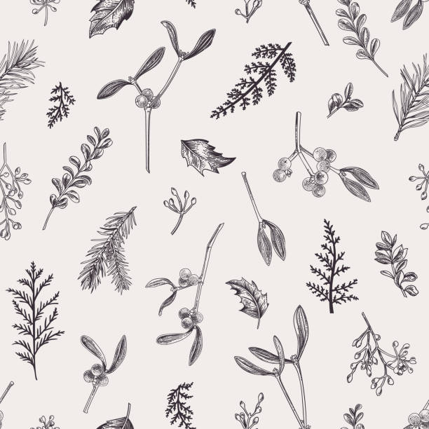 Seamless pattern with leaves, seeds, conifers. vector art illustration