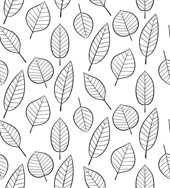 無縫圖案與葉子 - 葉狀花紋 幅插畫檔、美工圖案、卡通及圖標