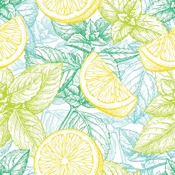 Seamless pattern with lemon and mint. Seamless pattern with lemon and mint. Summer background. Hand drawn vector illustration. lemon fruit stock illustrations