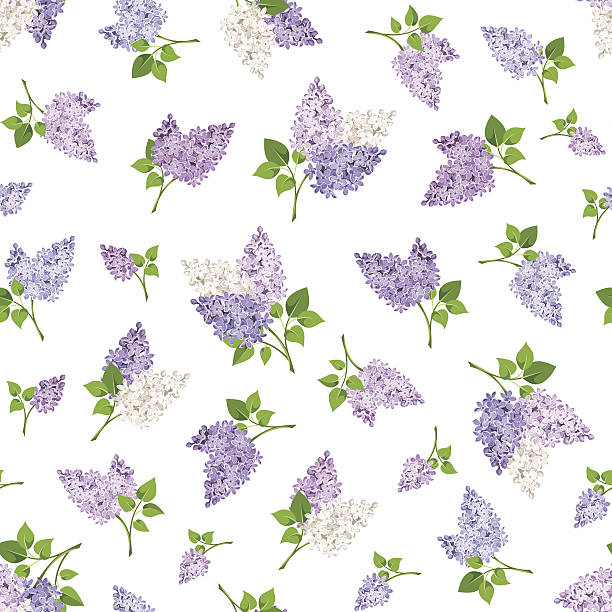 Royalty Free Lilacs Clip Art, Vector Images