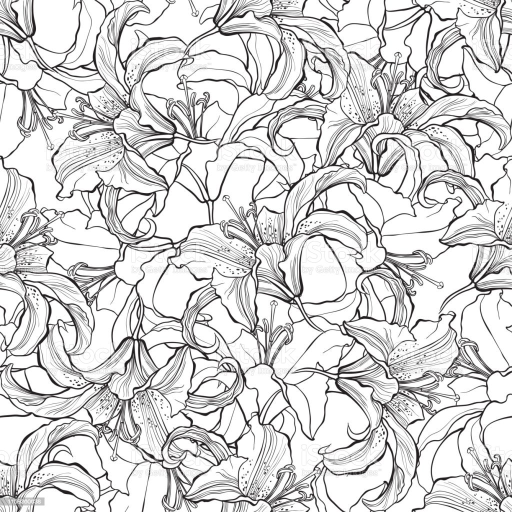 Lily flowers Floral abstract background. Vector illustration. Black...