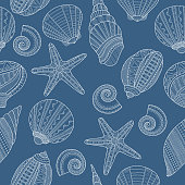 Seamless pattern with linear sea shells on blue background. Vector