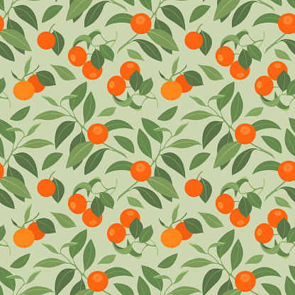 seamless pattern with mandarins on light green background
