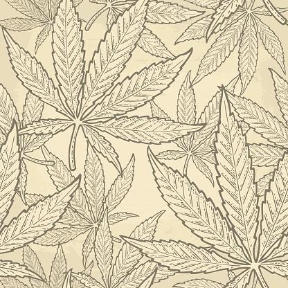 Seamless pattern with marijuana leaf. Vintage black vector engraving illustration