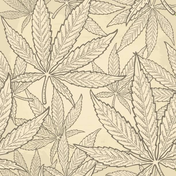 Seamless pattern with marijuana leaf. Vintage black vector engraving illustration Seamless pattern with marijuana leaf. Hand drawn design element cannabis. Vintage green vector engraving illustration for label, poster, web. Isolated on beige background marijuana stock illustrations