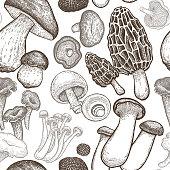 Seamless pattern with mushrooms.