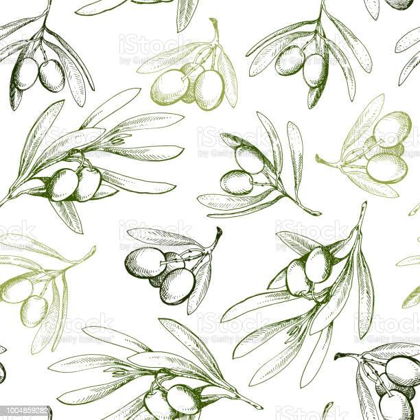Seamless pattern with olive branch drawn by hand vector id1004859282?b=1&k=6&m=1004859282&s=612x612&h=fli9e8ui7larompypeldaeh2d xadrvqxbms8wphkqq=