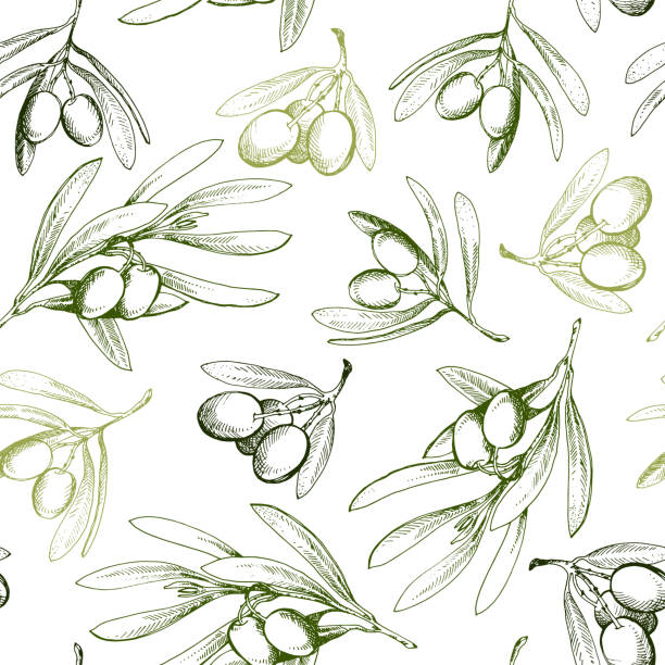 Seamless pattern with olive branch. Drawn by hand Seamless pattern with olive branch. Drawn by hand olives stock illustrations