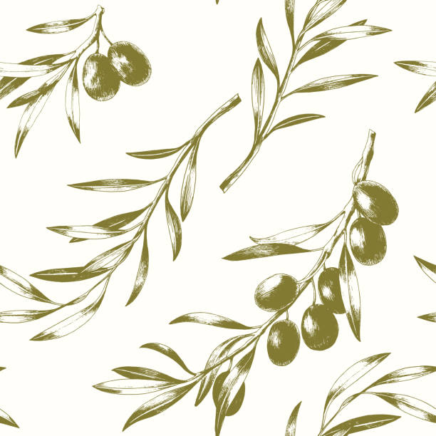 Seamless pattern with olive branches. Seamless pattern with olive branches. Elegant vector background. olives stock illustrations