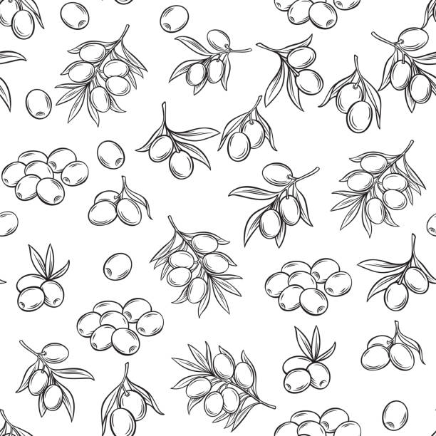 seamless pattern with olives Vector hand drawn seamless pattern with olives and tree branches for design food product and olive oil label. Illustration in retro style. olive branch stock illustrations