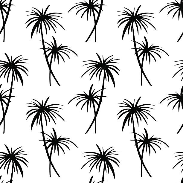 Royalty Free Contour Drawing Tropical Tree Tree Tropical