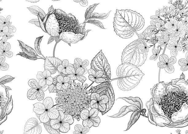 stockillustraties, clipart, cartoons en iconen met naadloze patroon met pioenrozen en bloemen hortensia. vector achtergrond. - hortensia