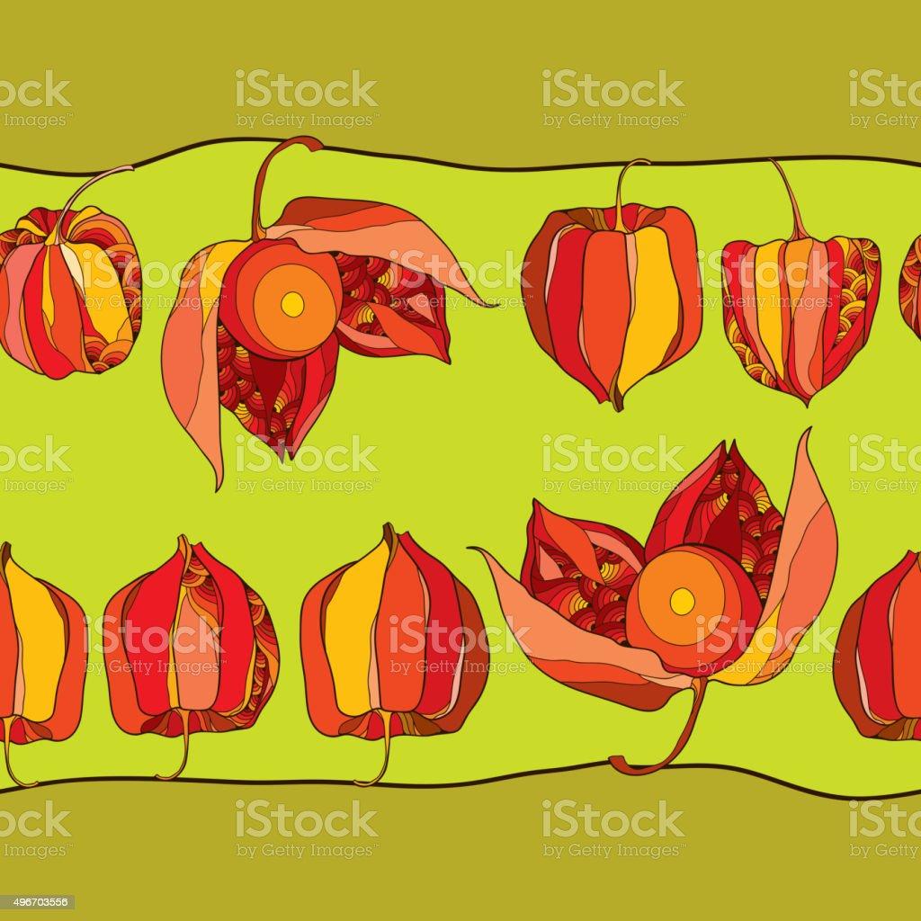 Patrón sin costuras con Physalis o cabo de gooseberry en rojo - ilustración de arte vectorial