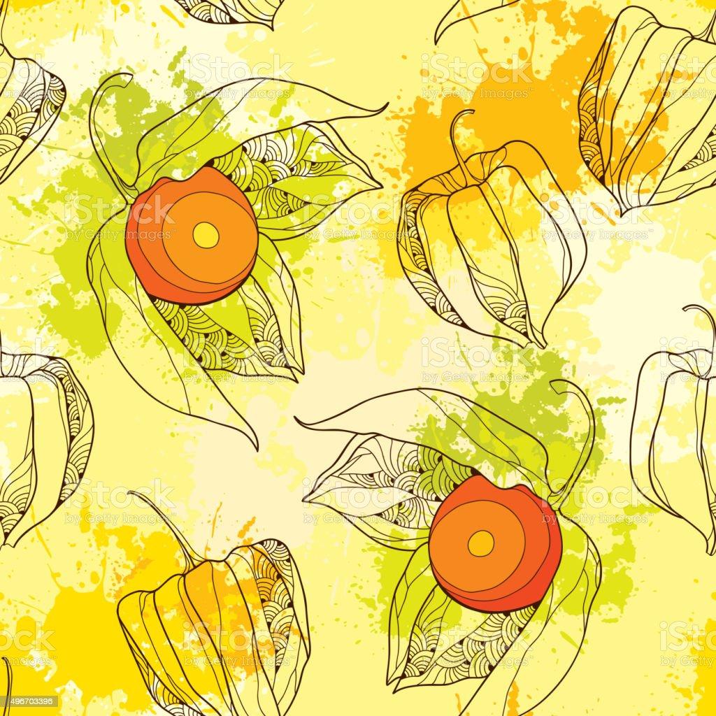 Patrón sin costuras con Physalis o cabo de gooseberry - ilustración de arte vectorial