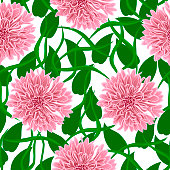 seamless pattern with pink flowers on a white background