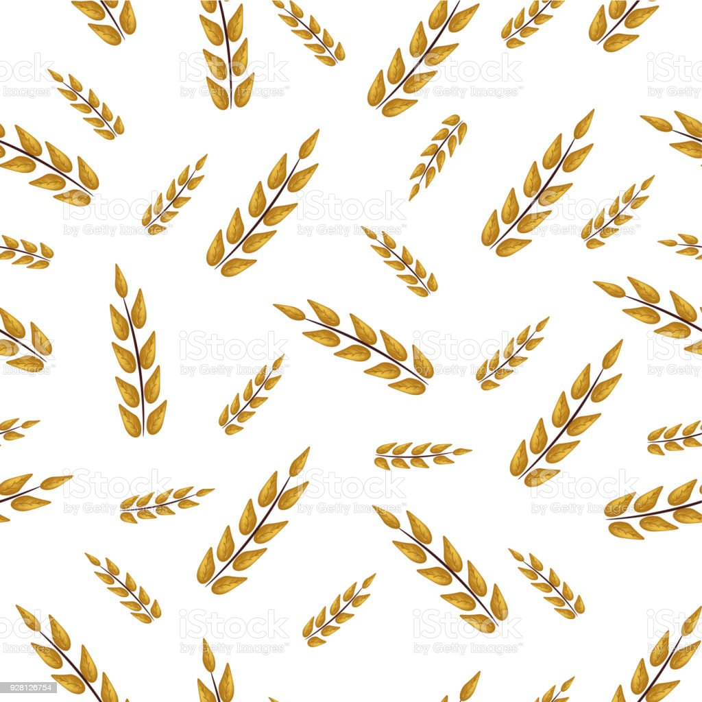 Seamless pattern with plants twigs spikelets yellow, spring and summer, ear on a white background for Easter vector art illustration
