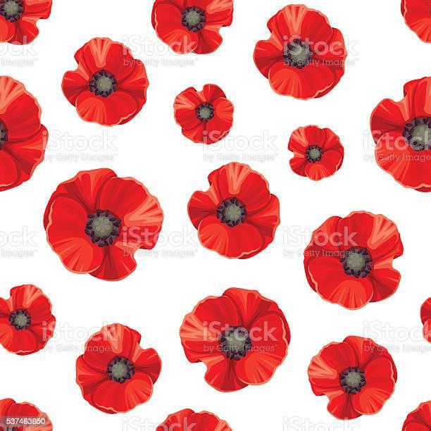 Seamless pattern with red poppies vector illustration vector id537463650?b=1&k=6&m=537463650&s=612x612&h=0hrf9fjtqn3dohhjzdaxchvjg0dxmb9qxce6axduty4=