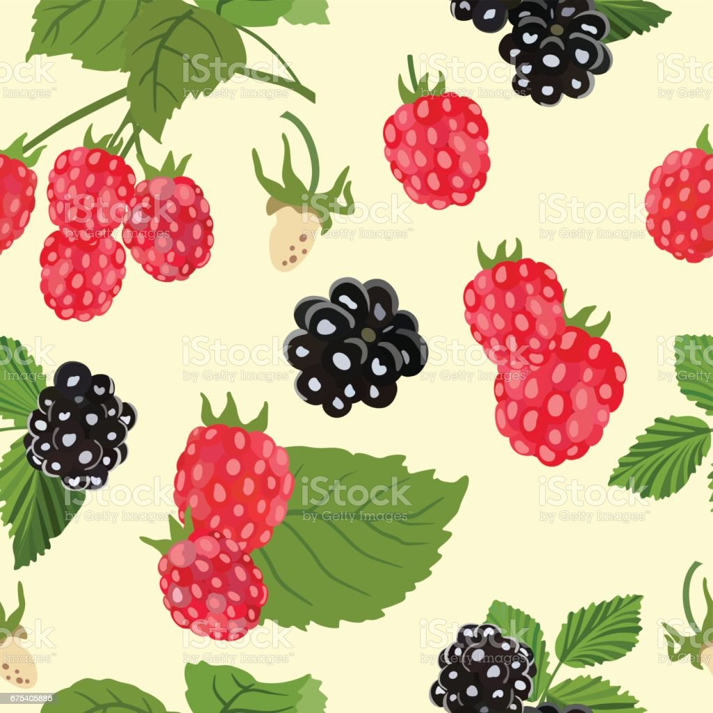 Seamless pattern with ripe raspberries and blackberries. Vector illustration. seamless pattern with ripe raspberries and blackberries vector illustration – cliparts vectoriels et plus d'images de additif alimentaire libre de droits