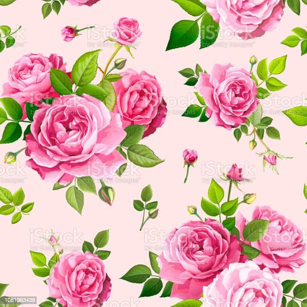 Seamless pattern with rose flowers vector id1081363438?b=1&k=6&m=1081363438&s=612x612&h=dyxwiwrnycesa koq1fdhrmvo8qbyqy23g7pcq24510=