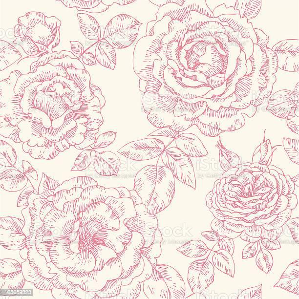 Seamless pattern with roses vector id165659323?b=1&k=6&m=165659323&s=612x612&h=getjxxbo877p2noloqcognhyiukp8dzi5iqfn4osc0s=