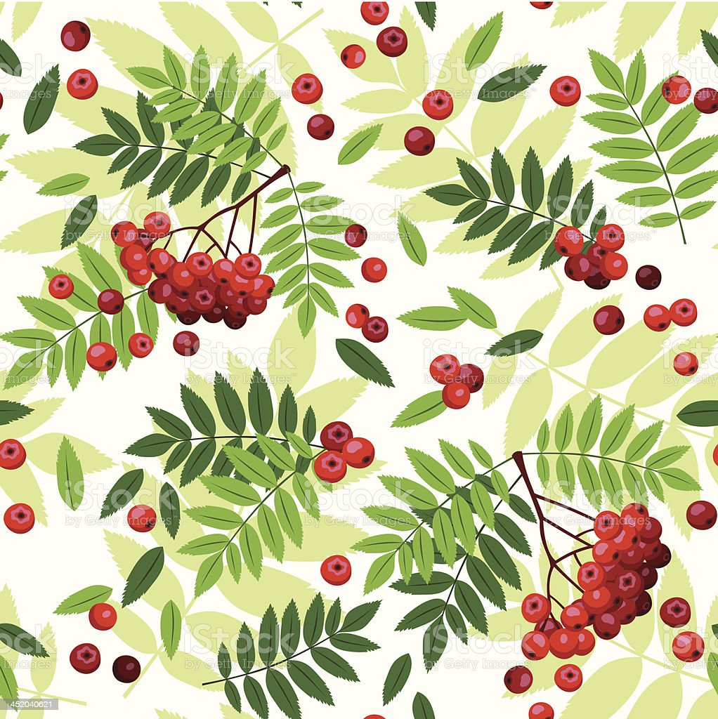Seamless pattern with rowan leaves and berries. Vector illustration. royalty-free stock vector art