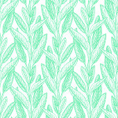Seamless pattern. Sage ink sketch on white background. Hand drawn vector illustration of salvia. Retro style.