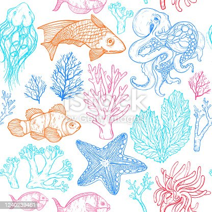 Seamless pattern with sketch of deepwater living organisms, fish, corals and octopus, vector illustration