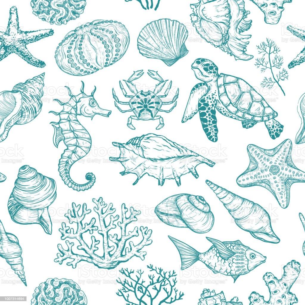 Naadloze patroon met schets van Seal oceaan leven organismen schelpen, vissen, koralen en schildpad. - Royalty-free Abstract vectorkunst