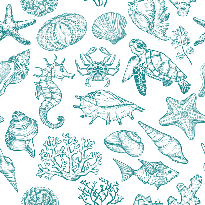 Seamless pattern with sketch of Seal Ocean life organisms shells, fish, corals and turtle.
