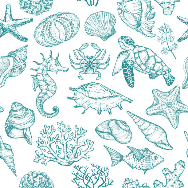 seamless pattern with sketch of seal ocean life organisms shells, fish, corals and turtle. - seashell stock illustrations, clip art, cartoons, & icons